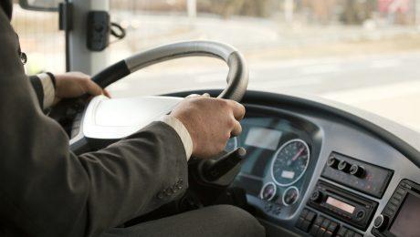 профессия водителя